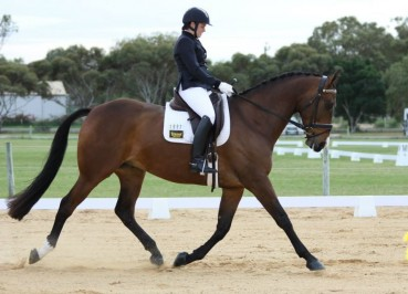 Tegan Sutton dressage